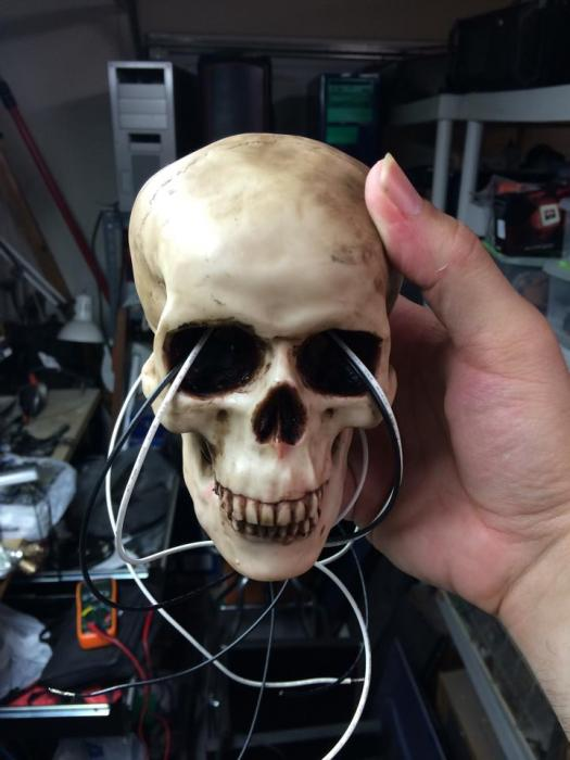 Name:  GR_skull002.jpg