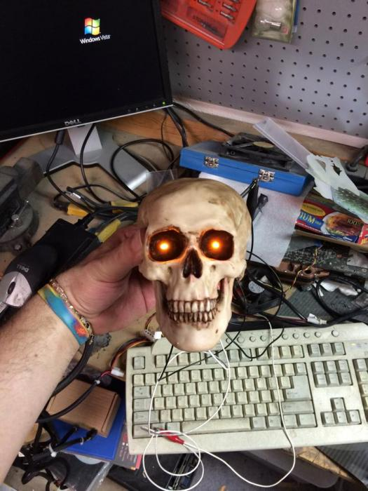 Name:  GR_Skull003.jpg