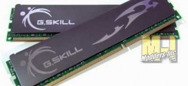 G.Skill ECO DDR3-1600 (PC3 12800) Desktop Memory