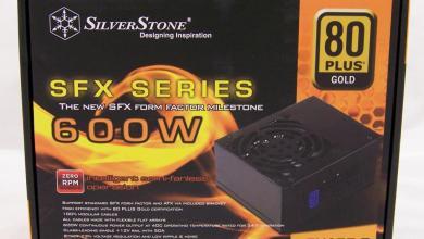 SilverStone SFX SX600-G - SilverStone SFX SX600-G 600W Power Supply Review psu, SilverStone 10