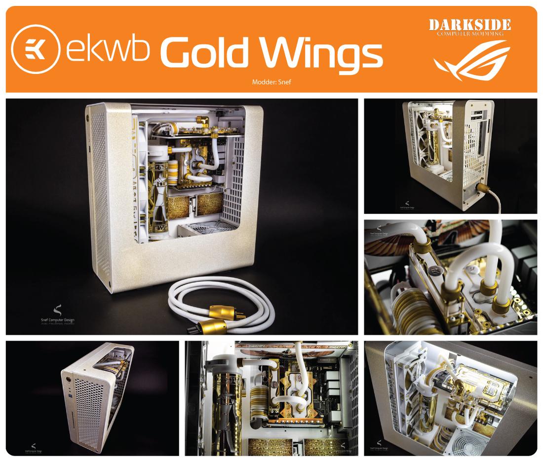 Gold Wings by Snef