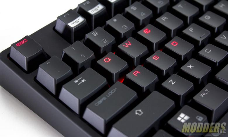 Photo of Ozone Strike Pro Keyboard Review: Clarity of Purpose