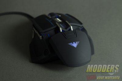 XM8-Blue Back