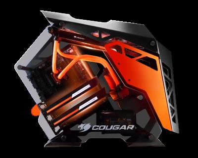 COUGAR-CONQUER-Case
